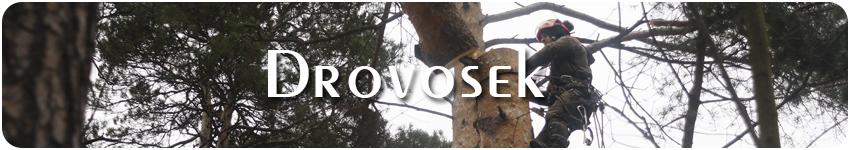 удаление деревьев в Электростали