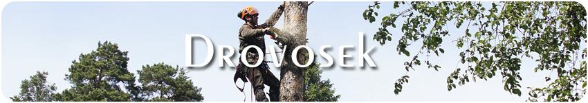 вырубка деревьев в Можайске