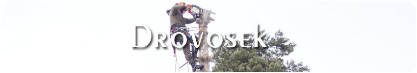 удаление деревьев в Ногинске