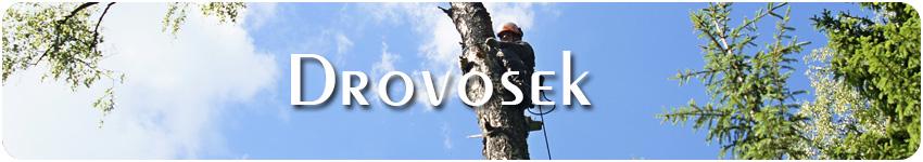 валка деревьев в Наро-Фоминске