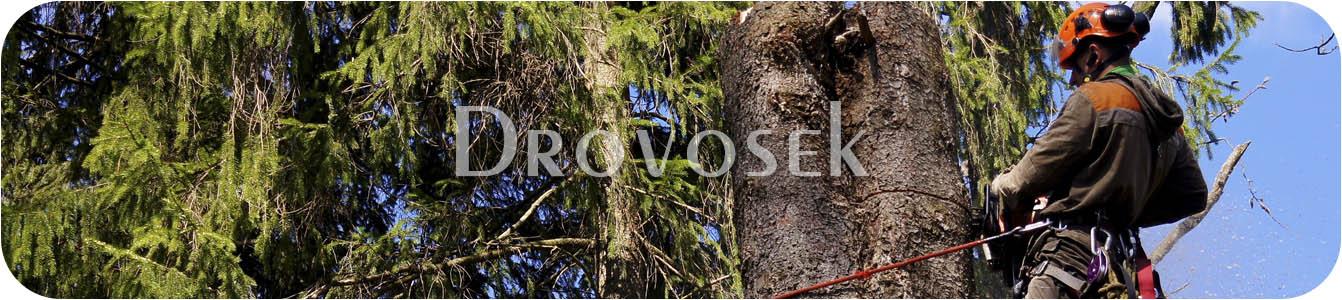 удаление деревьев Долгопрудный