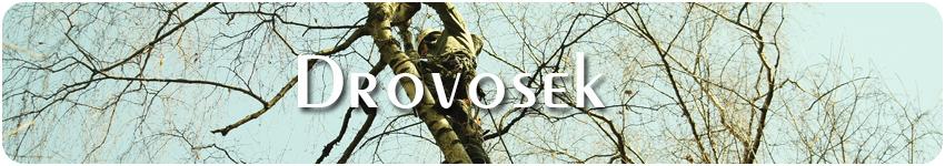 спил деревьев в Одинцово