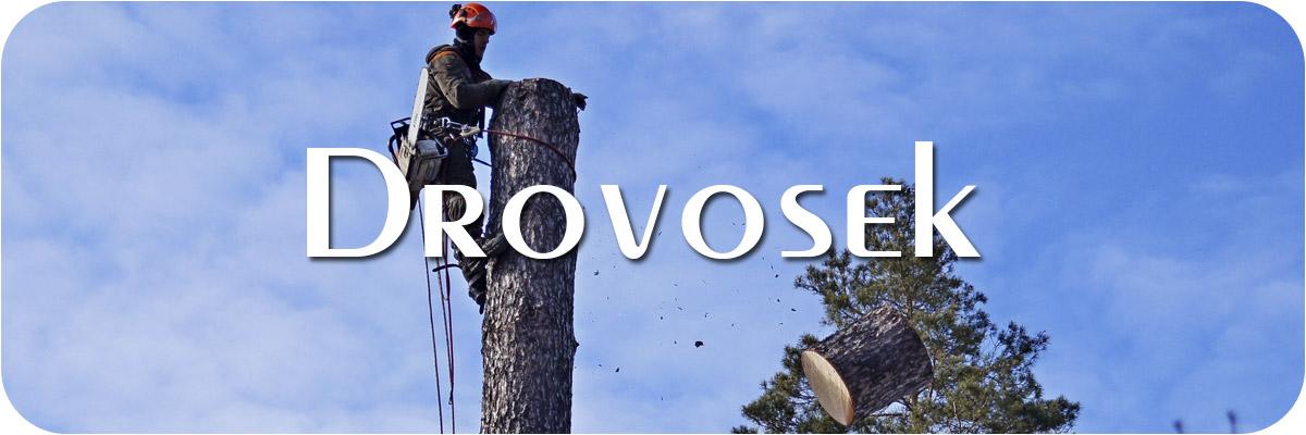 удаление деревьев в Мытищи