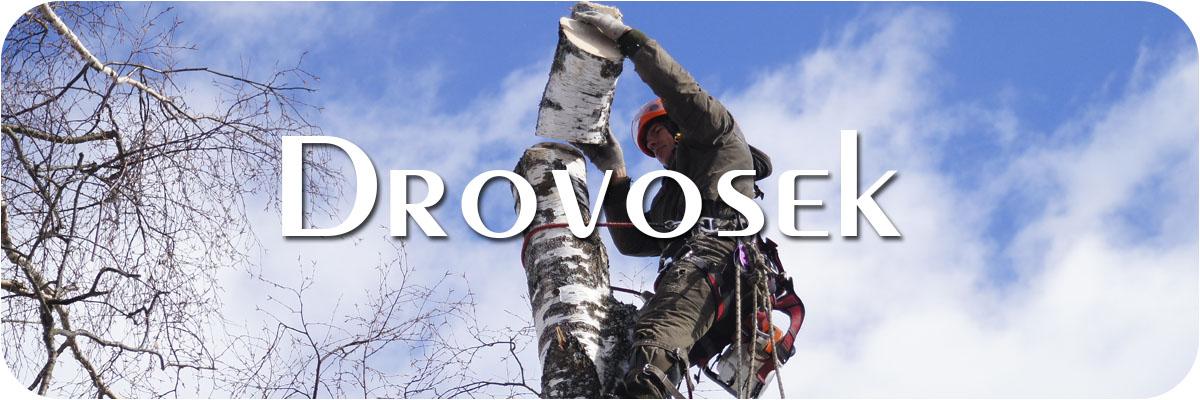 удаление деревьев в Дмитрове