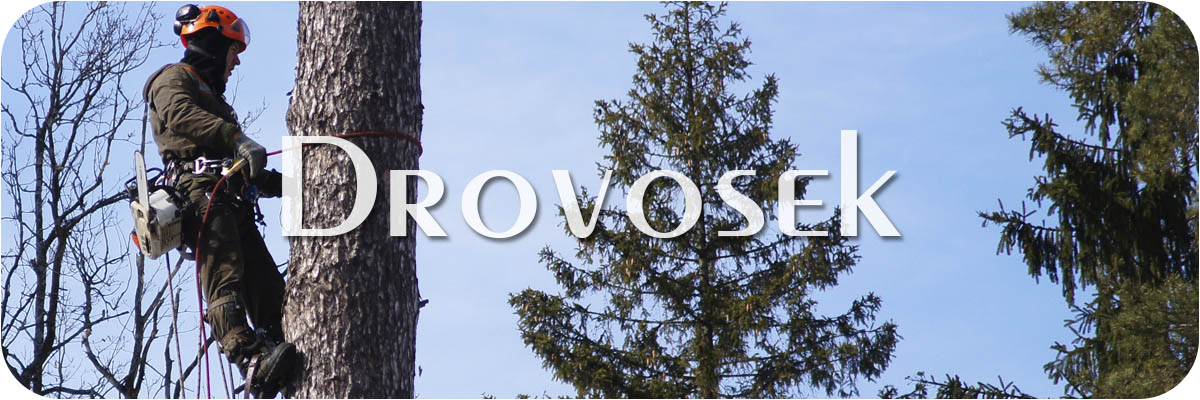 спил деревьев в Орехово-Зуево