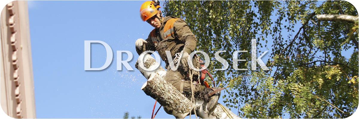 удаление деревьев Руза