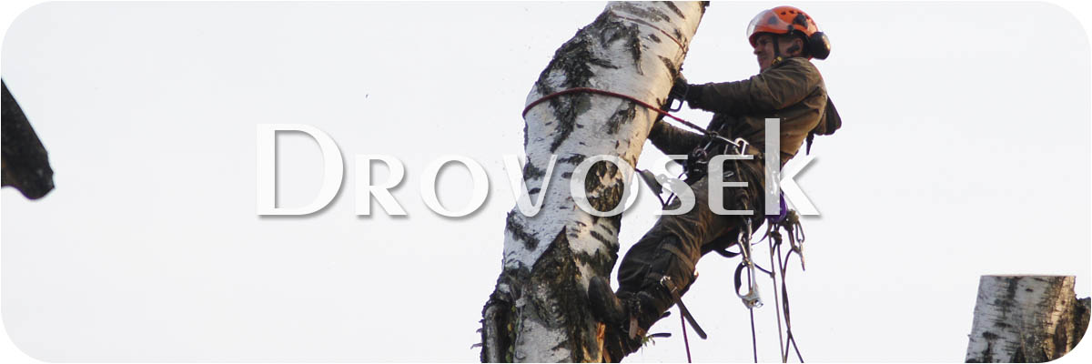 спил деревьев Коломна