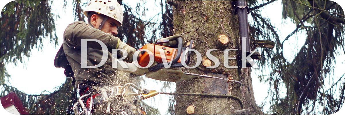 спил деревьев Шаховская