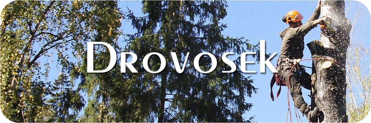 удаление деревьев в Одинцово