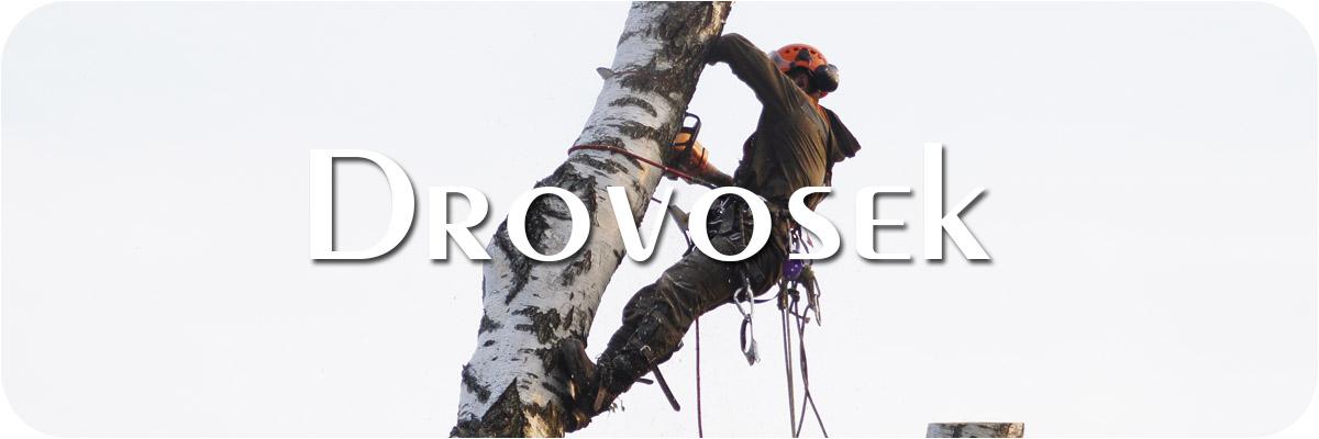 удаление деревьев Павловский Посад