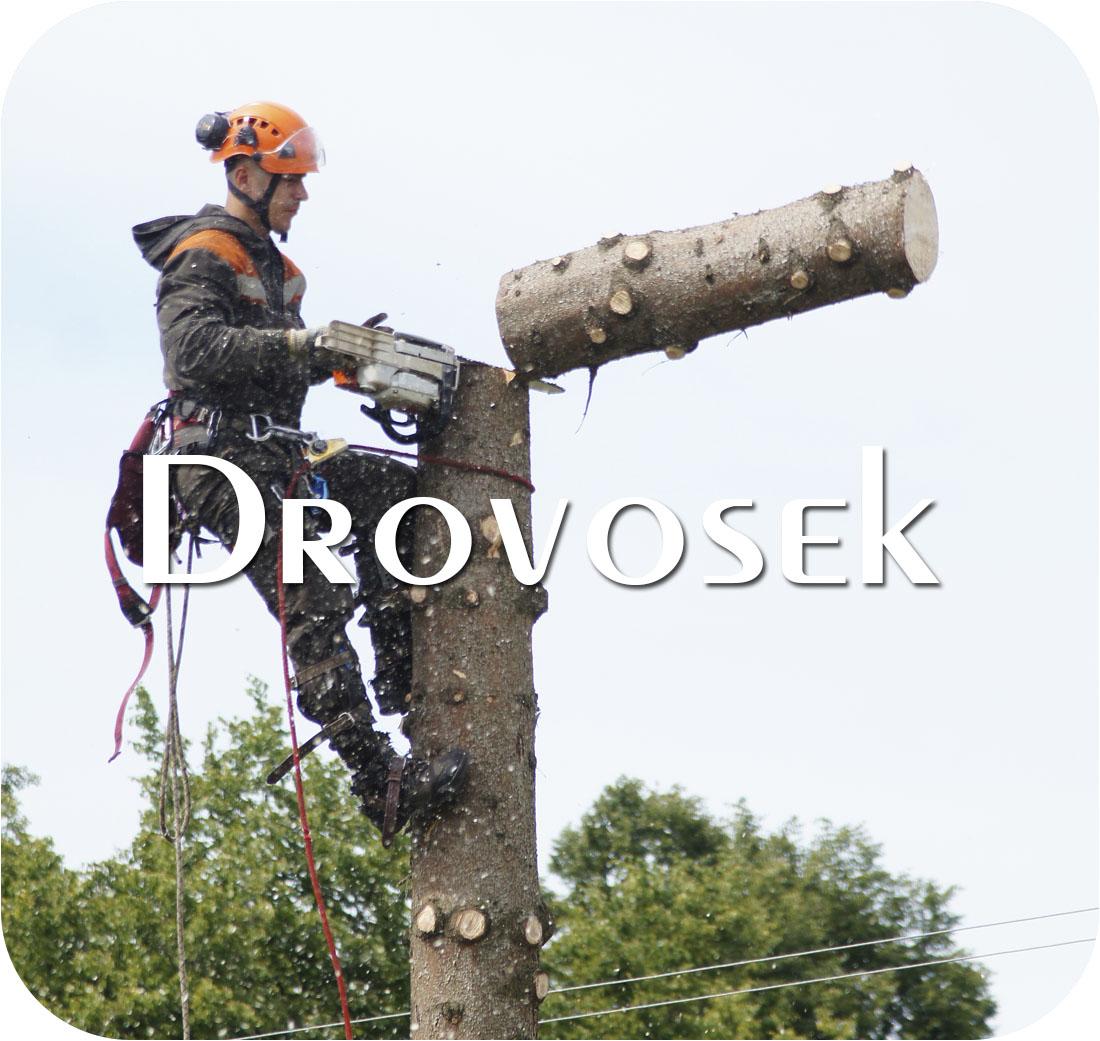 рубка деревьев в Дмитрове