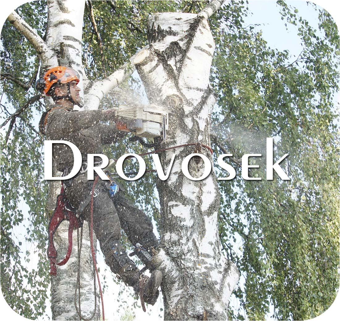 спил деревьев в Ногинске