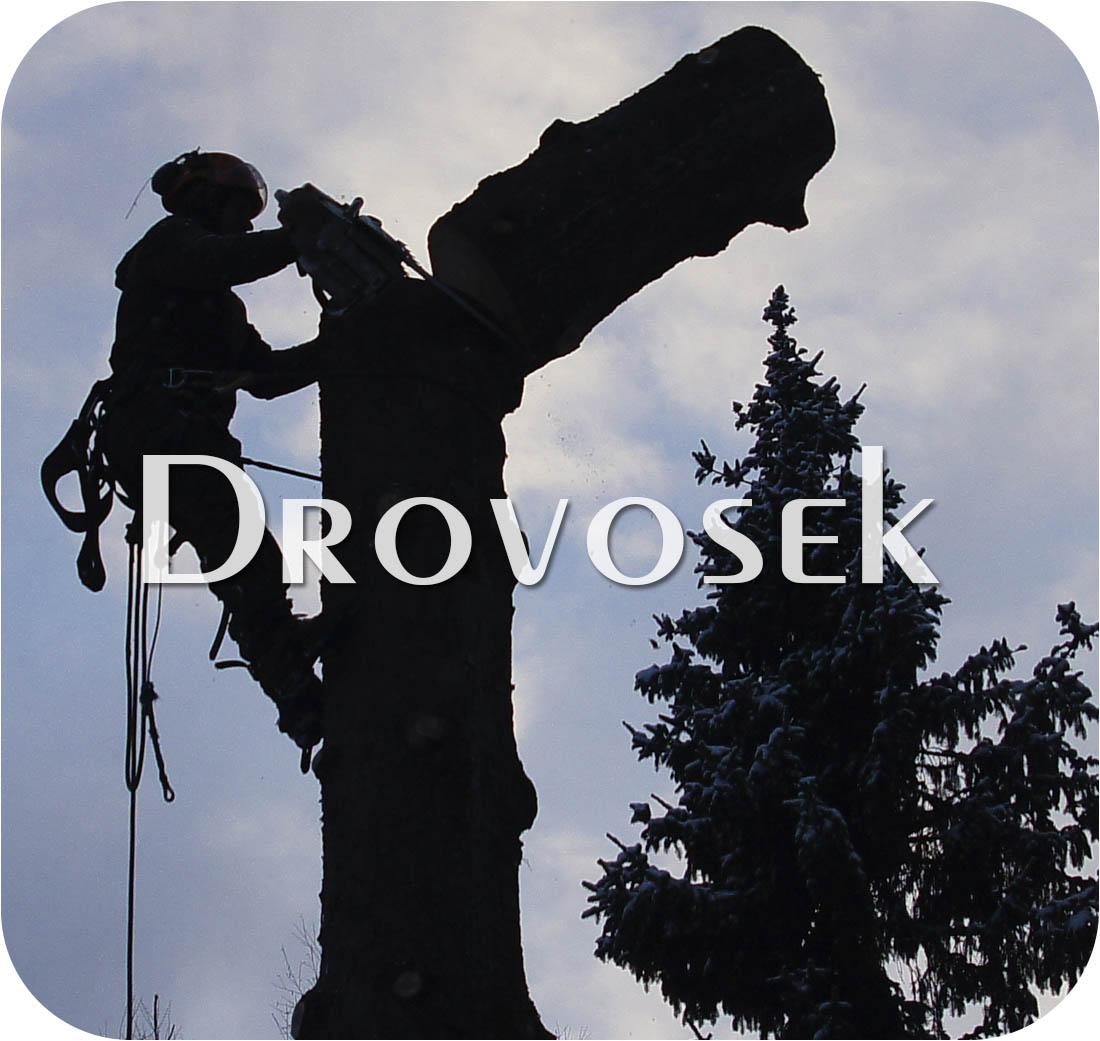 спилка деревьев в Щелково