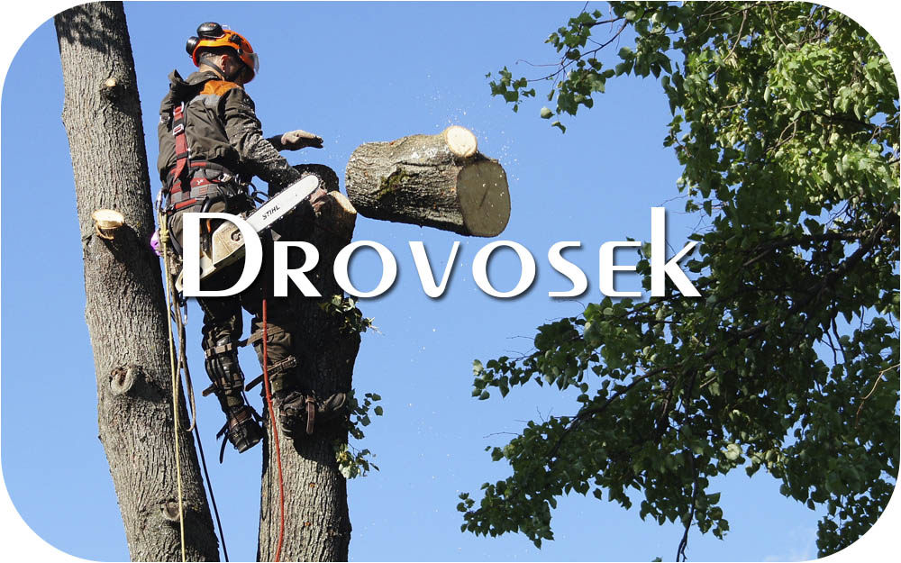 вырубка деревьев в Солнечногорске