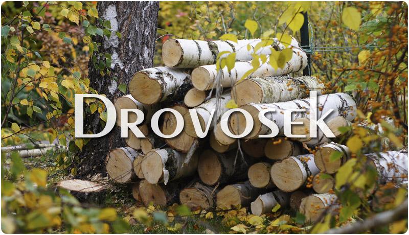распиловка леса на дрова