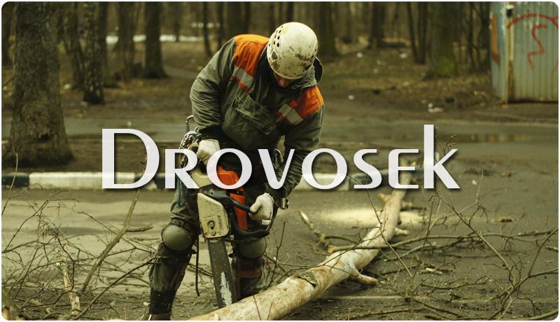 удаление сухих деревьев