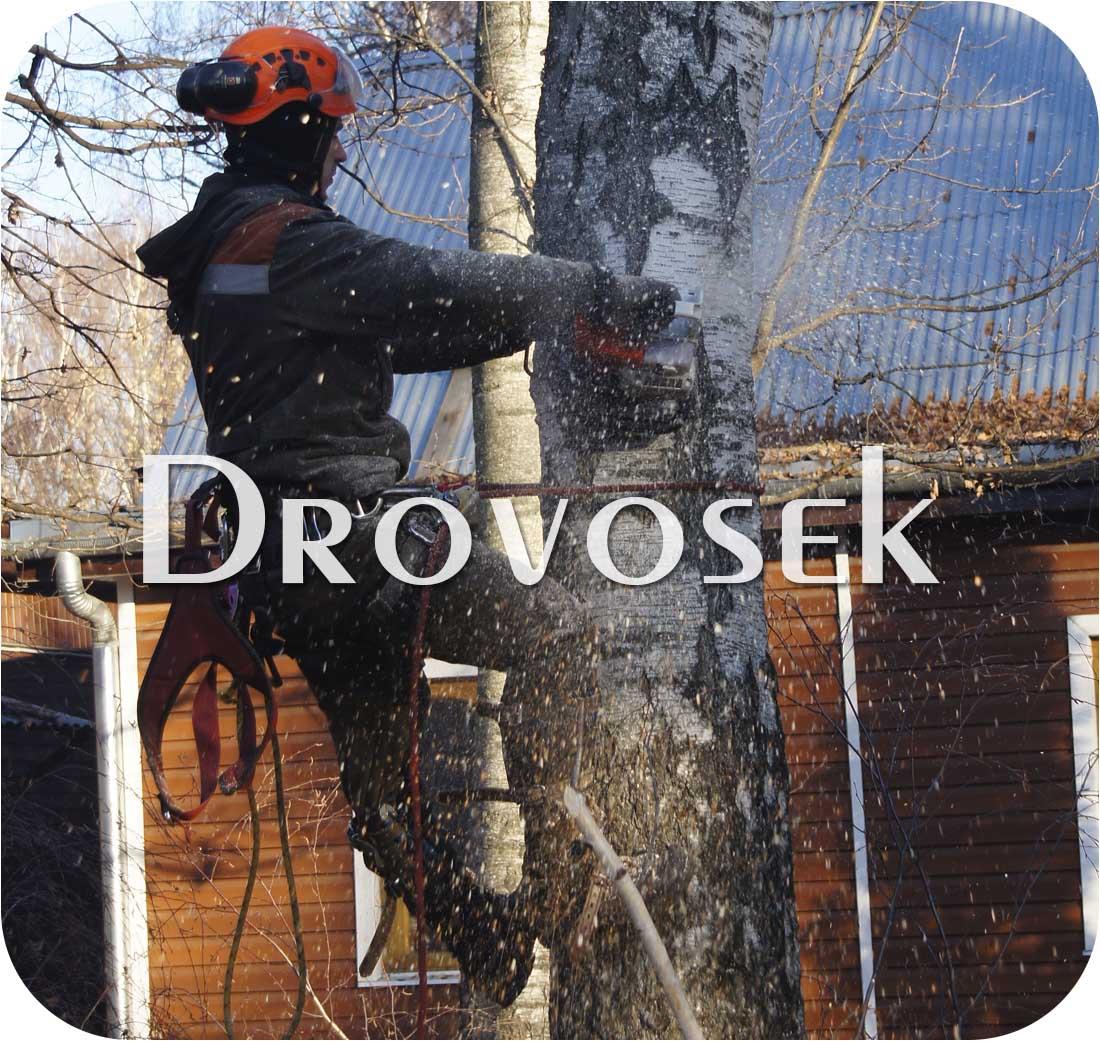 спил деревьев в Серпухове