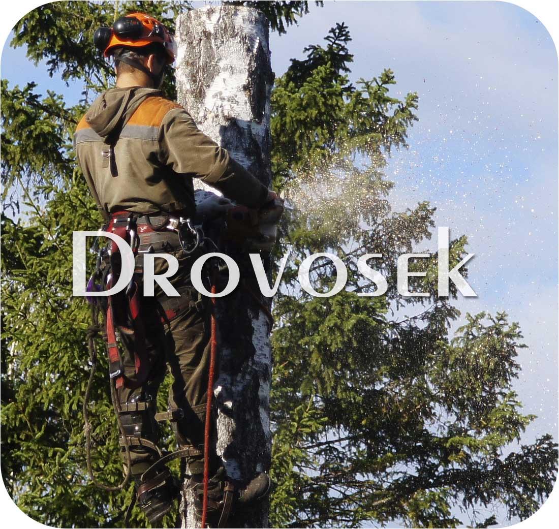 спил деревьев в Наро-Фоминске