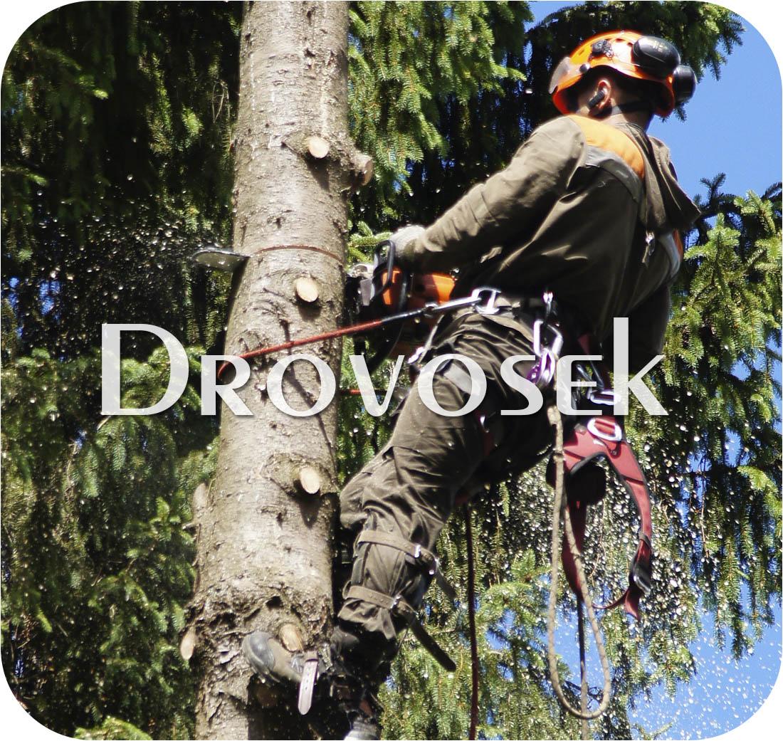 спил деревьев Егорьевск
