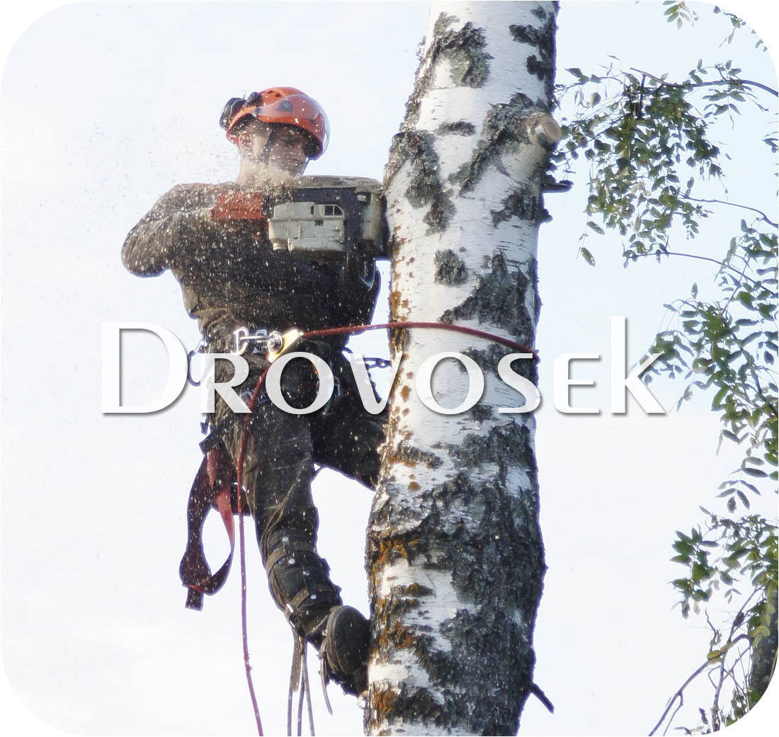 спил деревьев Кашира
