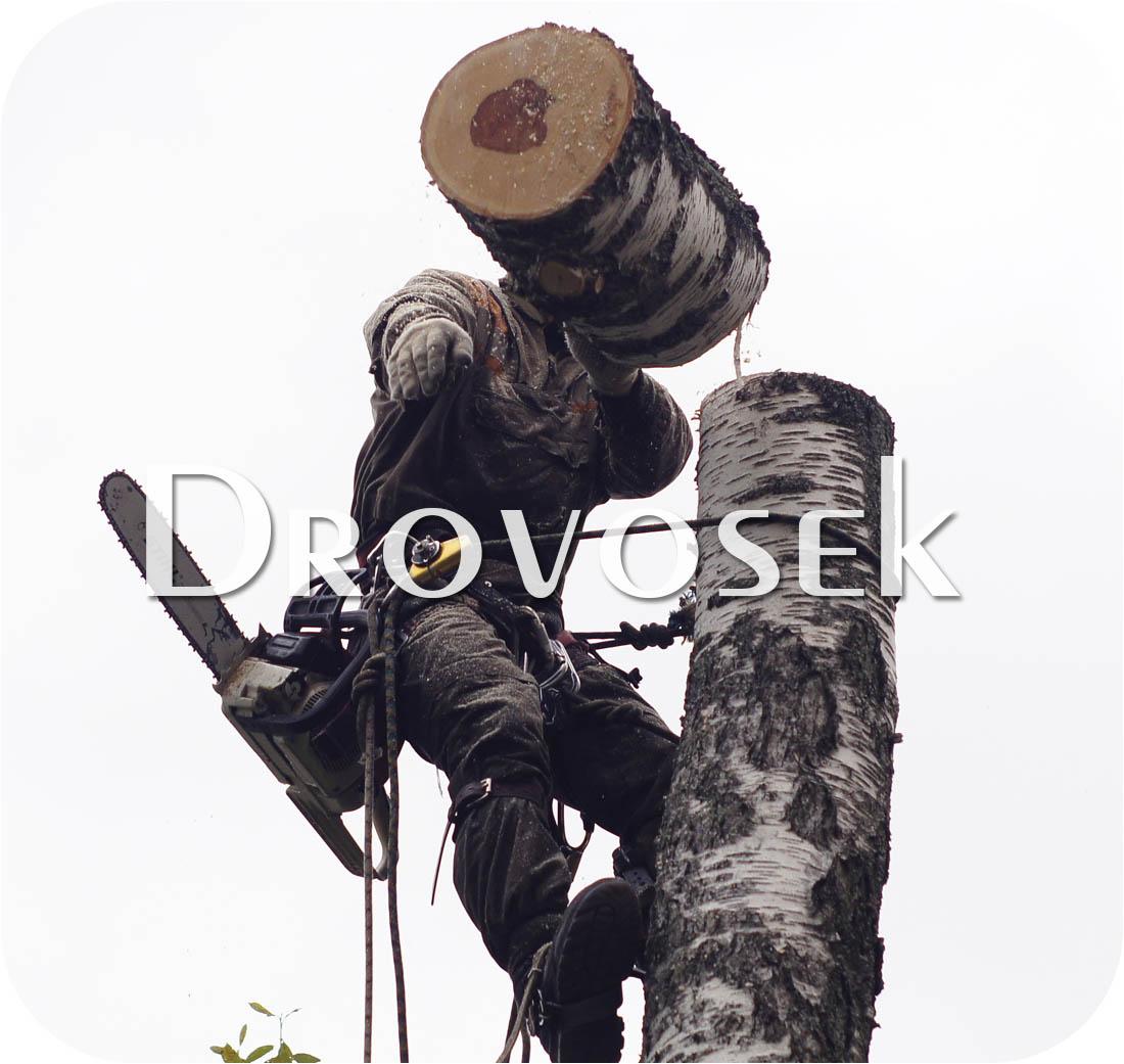 спил деревьев Зарайск