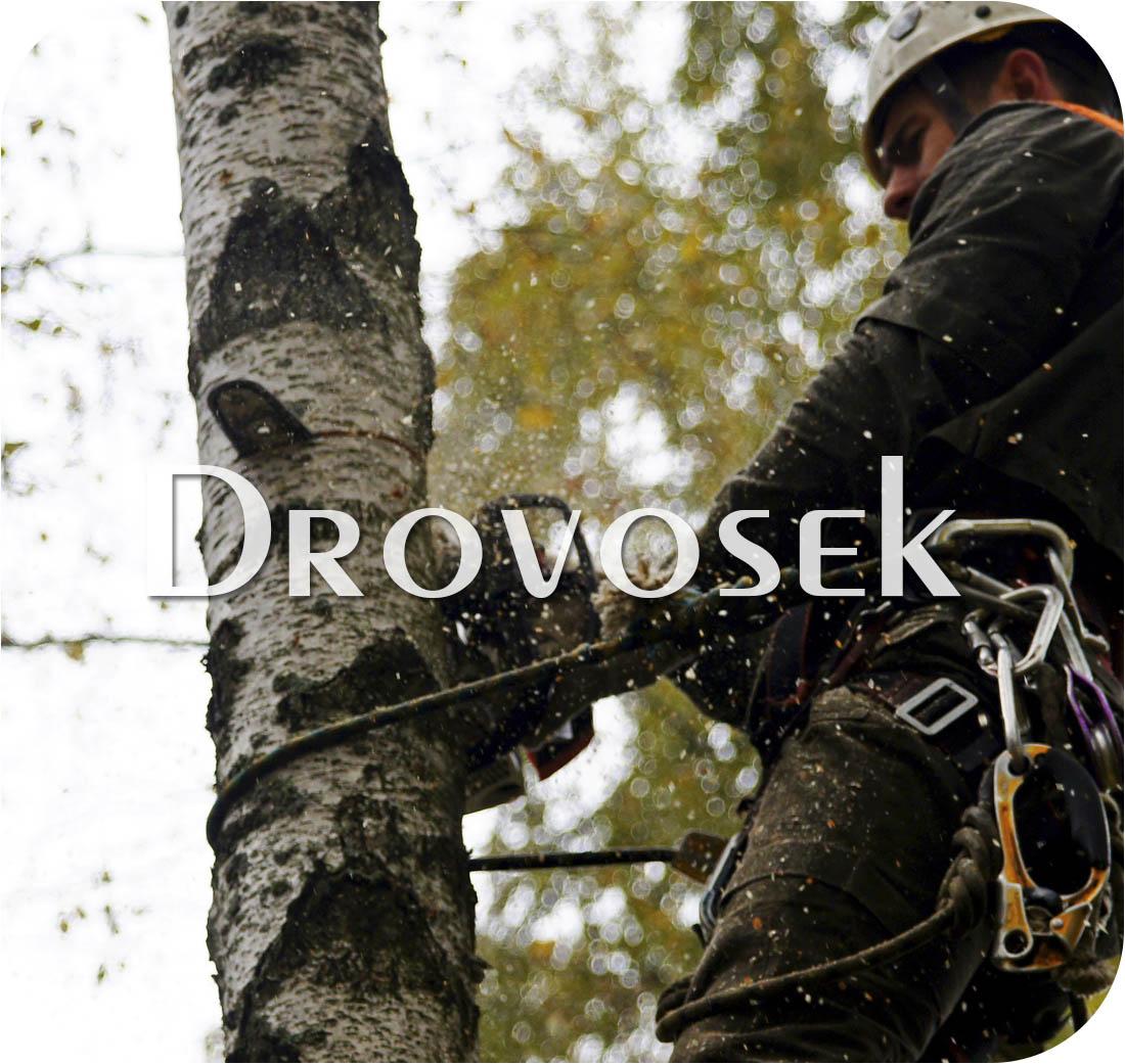 удаление деревьев Шаховская