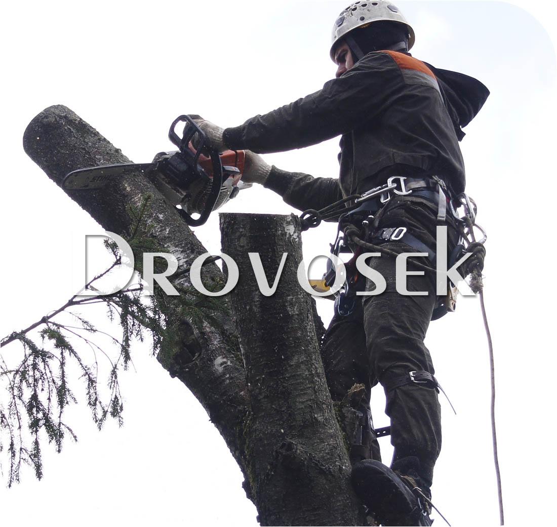 вырубка деревьев Озеры