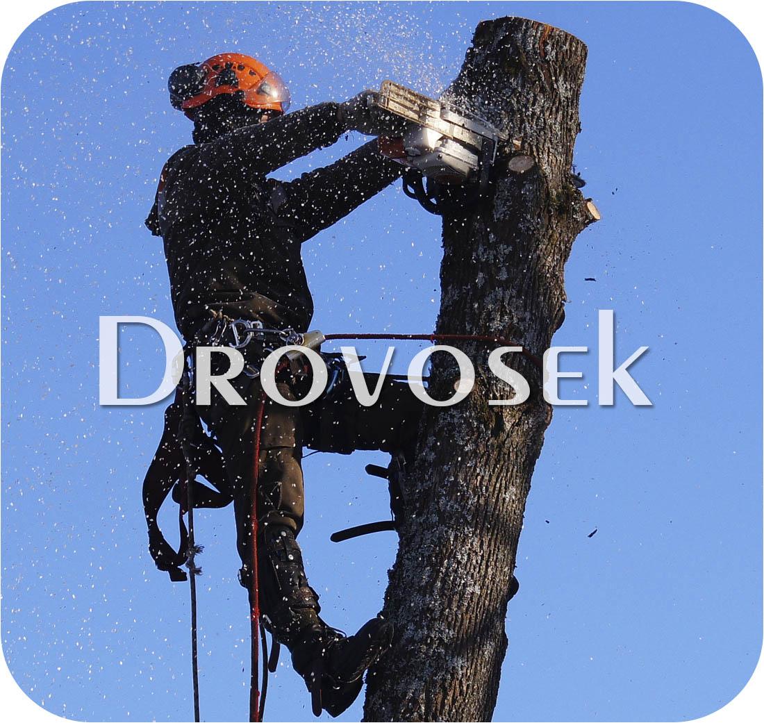 спил деревьев Зеленоград