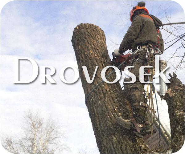 Вырубка деревьев в Электроуглях
