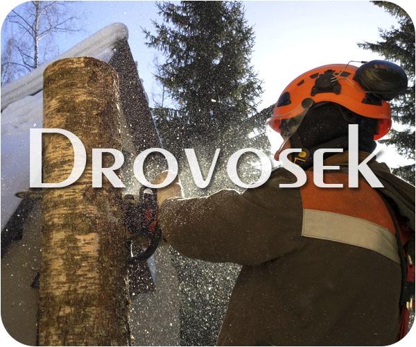 Вырубка деревьев в Бронницах