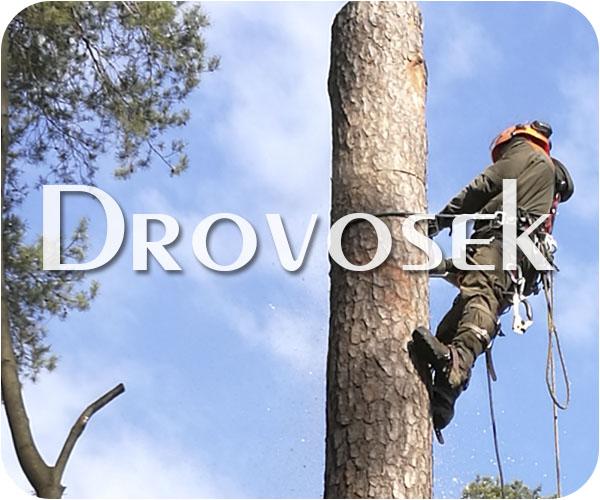 Спил деревьев в Хотьково