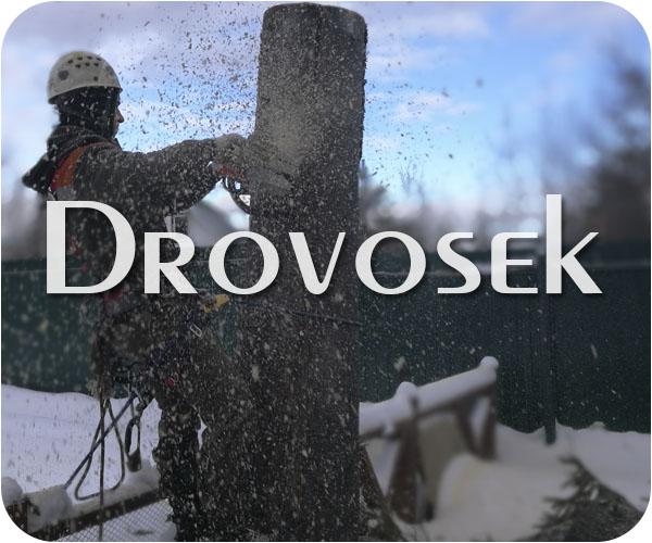 Вырубка деревьев в Хотьково