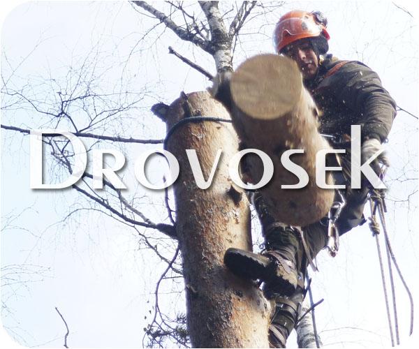 Спил деревьев в Голицыно