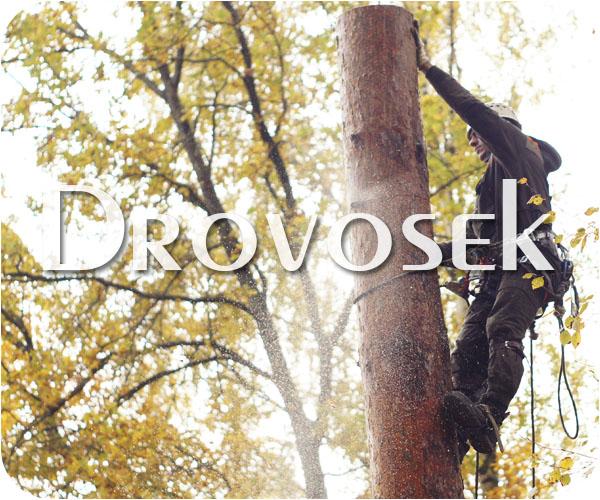 Удалить деревьев в Дедовске