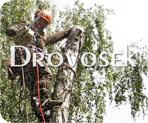 Спил деревьев в Быково