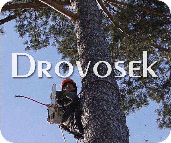 удаление деревьев в Монино