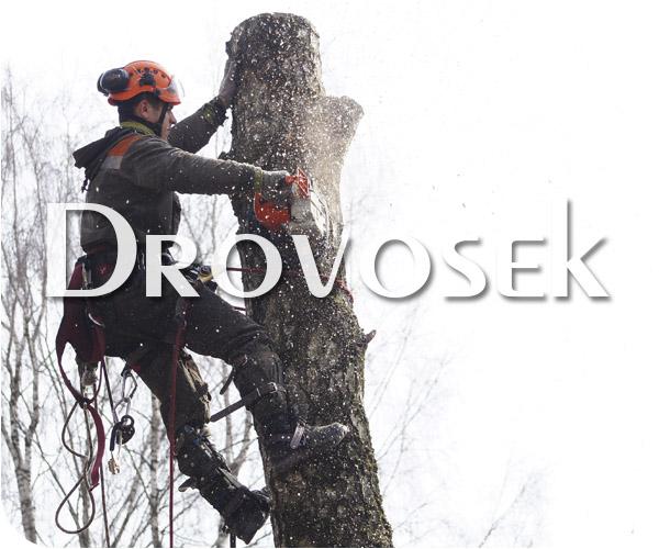 Удаление деревьев в Фряново