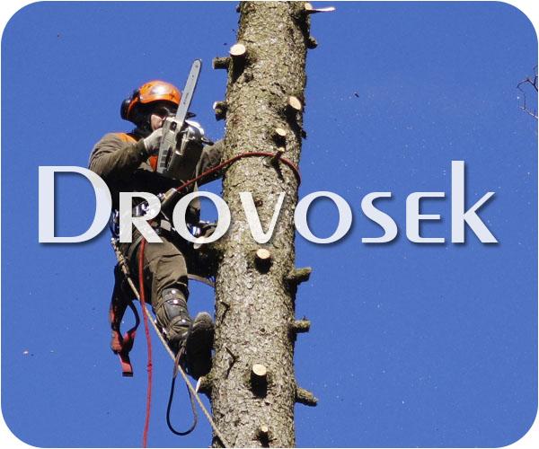 Удалить деревьев в Фряново