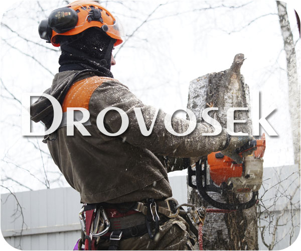 удаление деревьев в Апрелевке