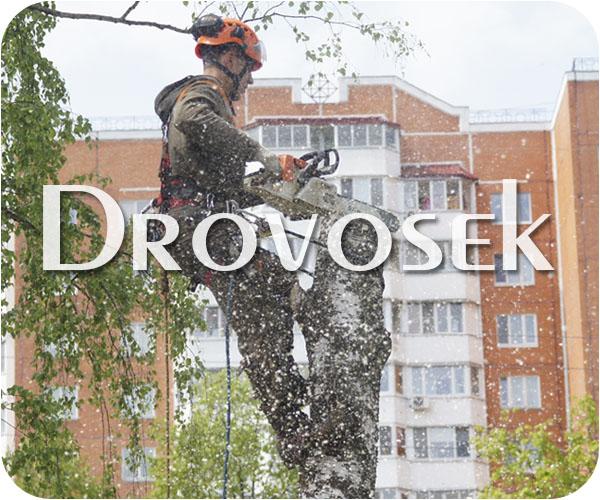 валка деревьев в Апрелевке