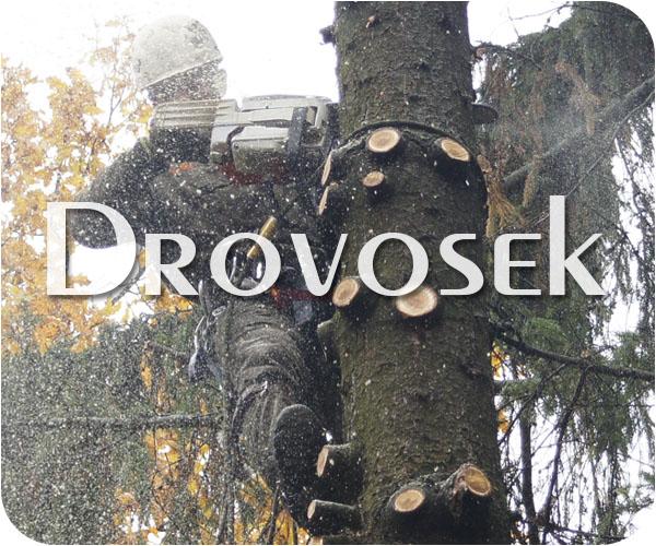 вырубка деревьев Жуковский
