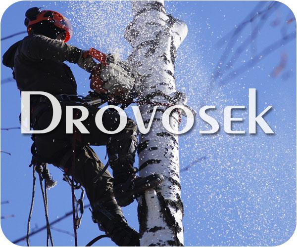 удаление деревьев Жуковский