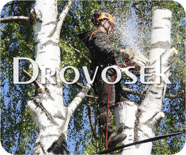 валка деревьев Куровское