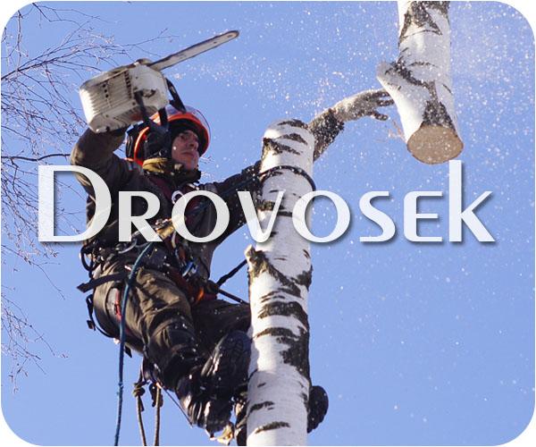 удаление деревьев Куровское
