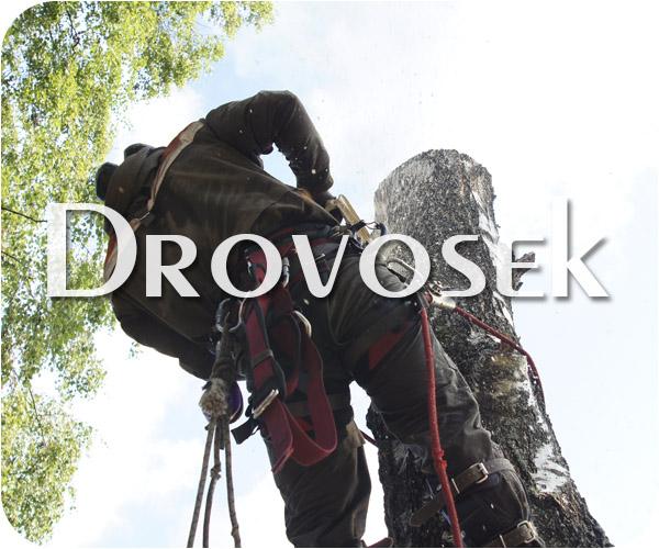 Валка деревьев в Быково