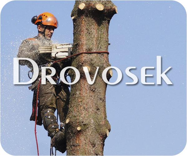вырубка деревьев в Купавна