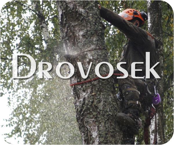 удаление деревьев в Купавна