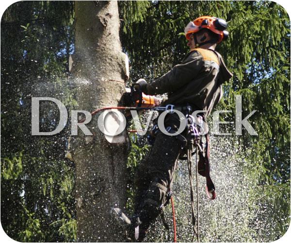 удаление деревьев в Кратово