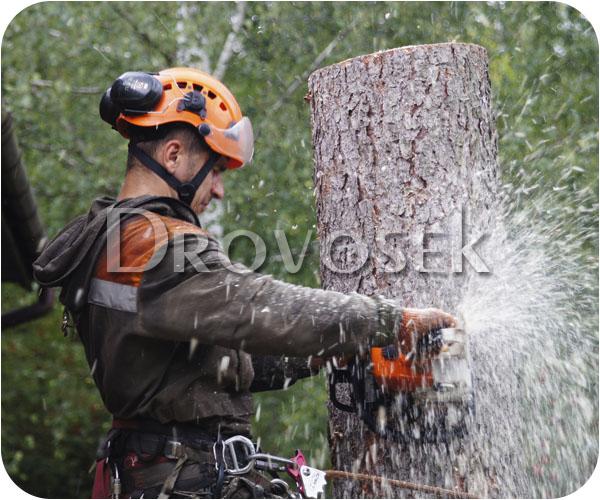 спилить дерево в Селятино