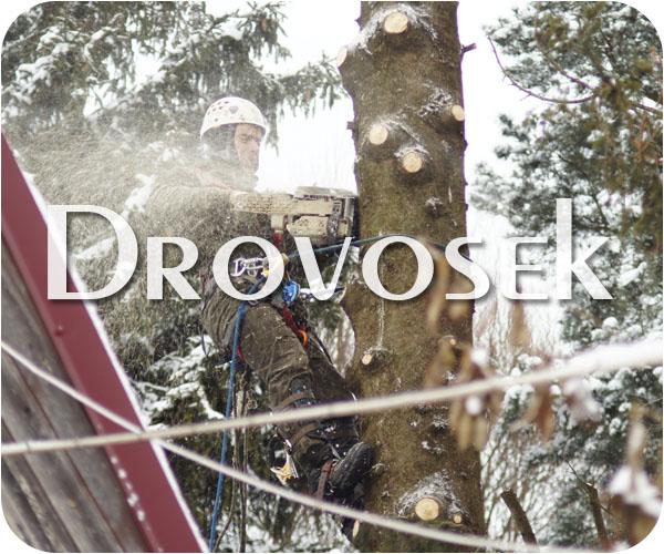 Спиливание деревьев в Малаховке
